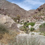 Anza-Borrego Desert State Park