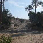 Photo of Auberge Camping Sahara