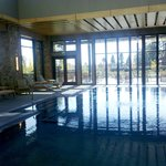 Pool from inside the spa, overlooking the grounds