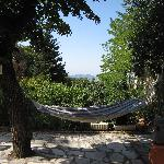 Relaxing in a hammock!