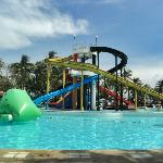 Island Cove Hotel and Leisure Park resmi