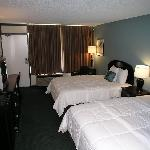 Springfield Hotel and Suites Foto