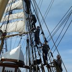 Taking down the sails