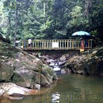 Φωτογραφία: Kota Tinggi Waterfalls Resort