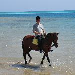 Photo of Horse Riding Hurghada