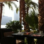 View at breakfast over looking the Nile
