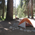 Photo de Lodgepole Campground