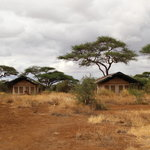  Amboseli Sentrim Camp