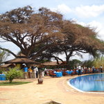 Foto van Kilima Safari Camp