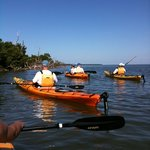 Captiva Kayak Company & Wildside Adventures