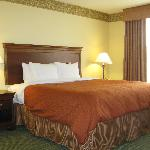 Country Inn & Suites Tinley Parkの写真