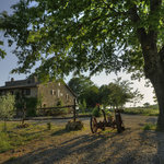 Agriturismo Biologico in Toscana Sant'Egle