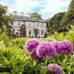 Photo of Mornington House Mullingar