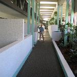  Atrium hallway between pool (on the right) and cabana rooms on the left