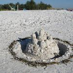  Sarasota Sandcastles