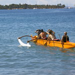 Maui Paddle Sports