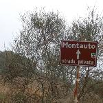  Montauto sign