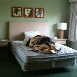 Photo de Extended Stay America - Corpus Christi - Staples