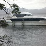 Gordon River Cruises