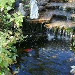 The waterfall, and pretty colorful fish...