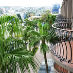  palm view of city