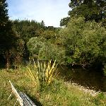 The Riwaka river runs along the property - a great spot for a swim and a picnic!
