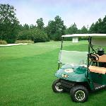 Foxfire Golf and Country Club resmi