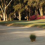 Robber's Row at Port Royal Golf Club