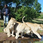 Zorgfontein Game Farm