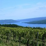 Photo de Finger Lakes Wine Country