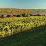 A view of Keuka Lake from our winery in the Fall