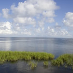 Laguna Madre