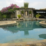 The pool at the Umalas Equestrian Resort