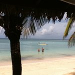 Murphy's Roatan Tours