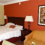 Hampton Inn & Suites Houston-Katy resmi