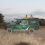 Tropical Adventure Safaris - Day Tours