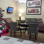 Holiday Inn Timonium resmi