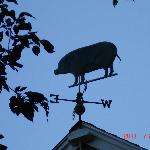 the weather vane at Brimblecomb