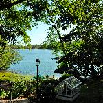 view of VanCleef Lake from the back yard