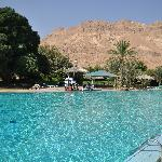 Photo de Kibbutz Ein Gedi Country Hotel