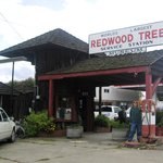 "World""s Largest Redwood Tree Service Station"