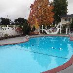 pretty pool and Fall colors
