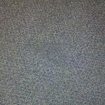 Spot on carpet (OK, I know it's hard to see)