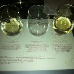 Exotic white wine flight.