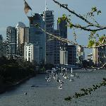  Brisbane City