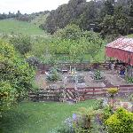  View of the Garden