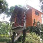 Treehouse accom