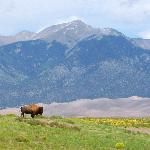  Great Sand Dunes National Park near Crestone, CO