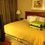 Foto de Homewood Suites Dulles International Airport