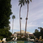 Foto di Avalon Hotel Palm Springs